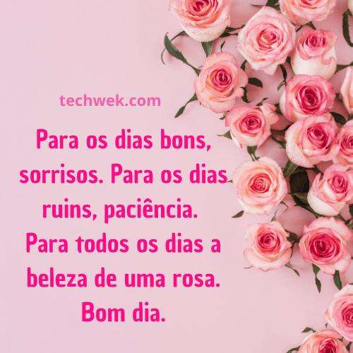 bom dia com  rosas para alegrar