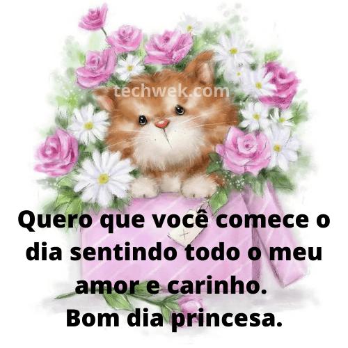 Frases romantica de bom dia princesa