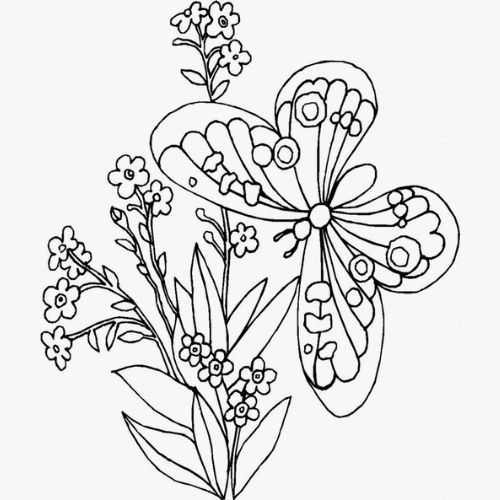 Borboletas para Colorir com flores