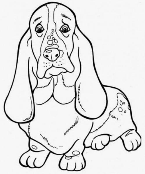 Desenho lindo de cachorro fofo para pintar