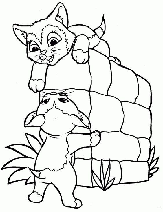 Desenhos de gatos para pintar brincando