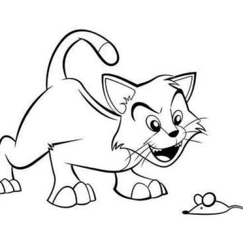 Desenhos de gatos para pintar crianças