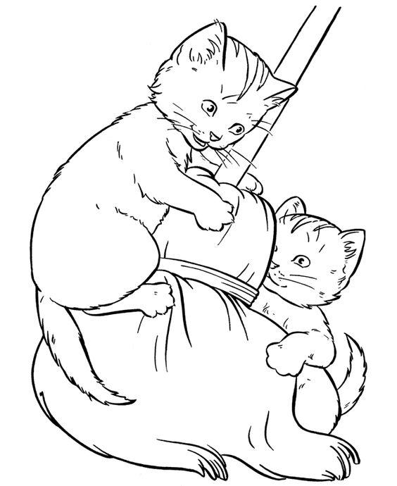 Desenhos de gatos para pintar dois lindos