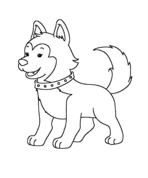 Desenho para imprimir e colorir de cachorro fofo