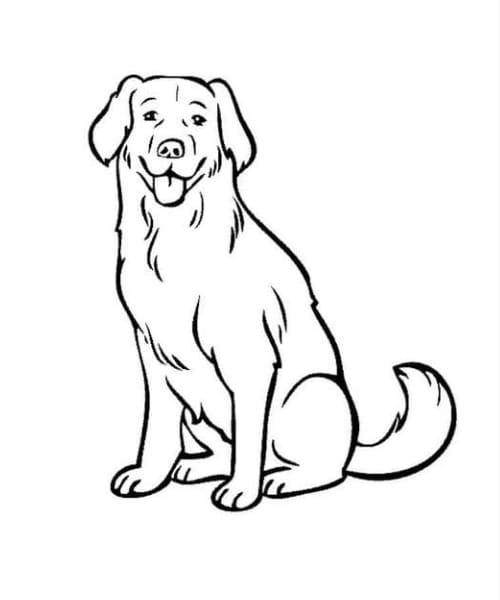 Desenho de cachorro fofo para colorir