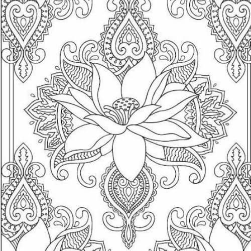 Imagem delicada de bela flor para pintar e imprimir