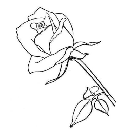 Desenho de uma rosa para colorir e imprimir