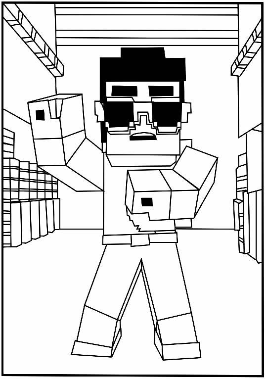 desenhos  Minecraft boyzinho