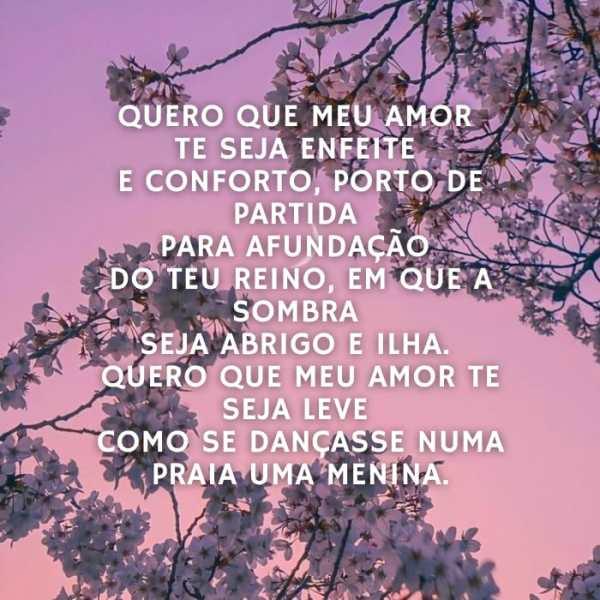 Que minha poesia e o meu amor te conforte a vida inteira