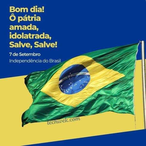 imagens do dia da dependência do brasil com bom dia