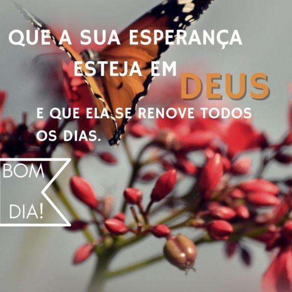 bom dia com esperança em Deus