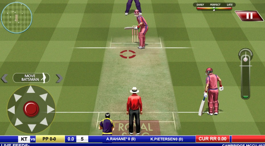 real cricket gameplay