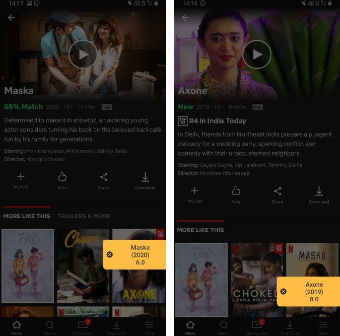 flutter imdb ratings netflix