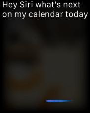 Siri-Apple-Watch_Review-Techzei