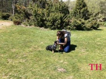 Senderismo con perro por Rascafría