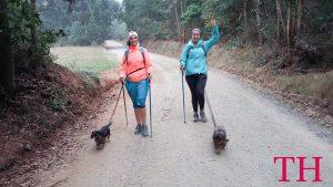 Puedo hacer el Camino Santiago con Perro