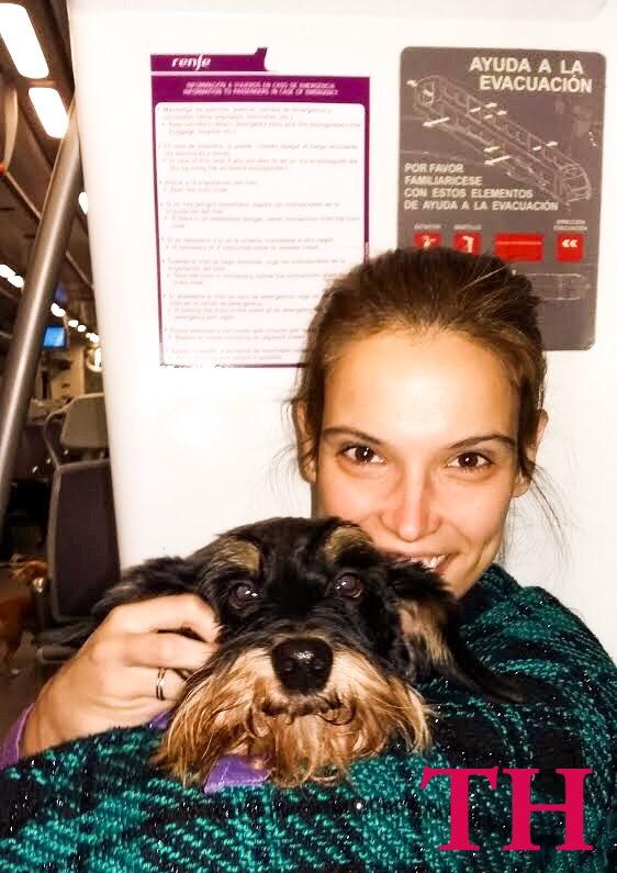 Cuatro formas de viajar con perro en transporte público
