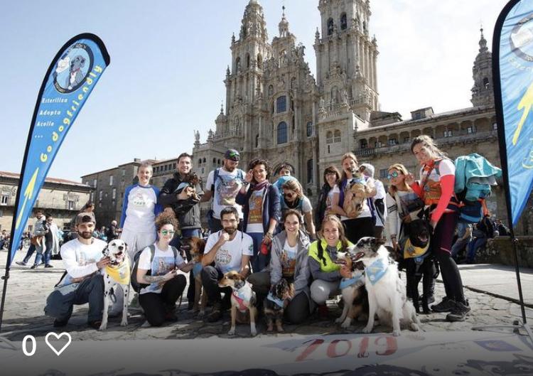Etapa 5: Finisterre - Santiago: Santiago
