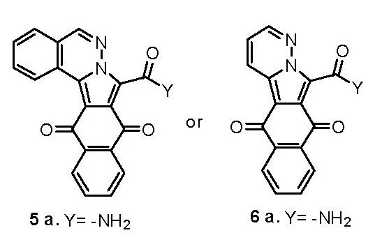 New polifunctional nitrogen derivatives (heterocycles