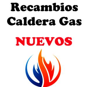Recambios Caldera Gas Nuevo