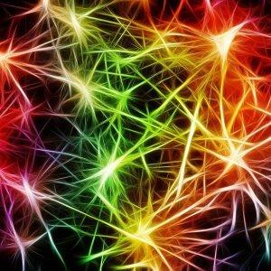 Curso de especialista en neuropsicología