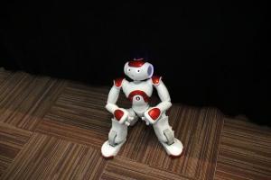 NAO, el robot fabricado por Alderaman Robotics, es utilizado para múltiples plataformas de educación e investigación. (SINC)