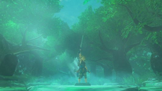 the legend of zelda breath of the wild (2)