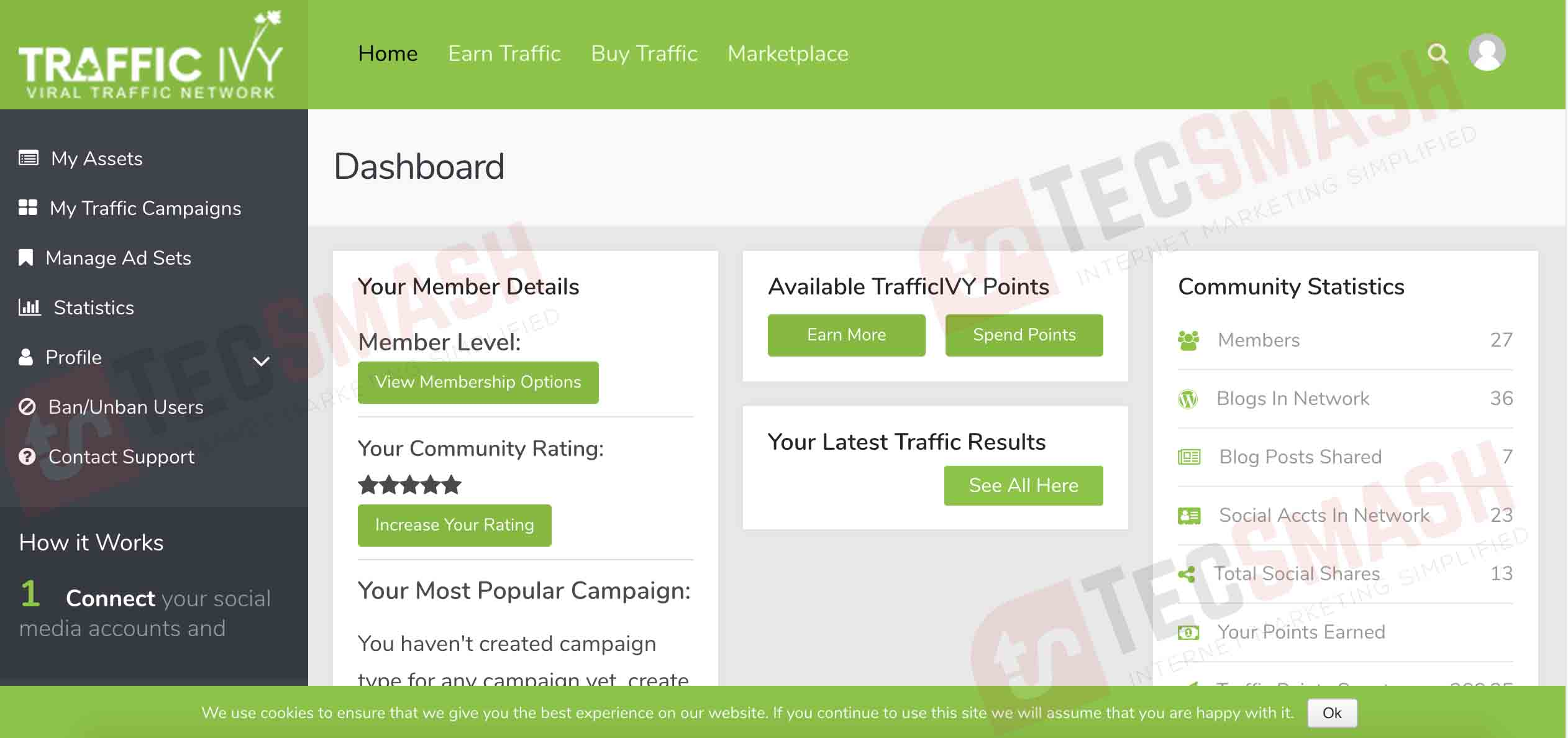 Traffic Ivy: Real FREE Traffic Anytime You Need