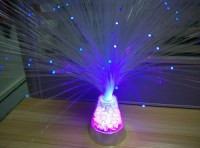 Fibre Optic Lamp from Technical Solutions Australia