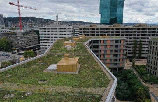 s'Drooni über Zürich, Turbinenstrasse