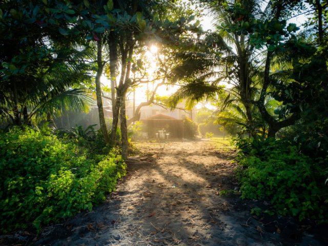 TECTON-Reise 2020 Fauna und Flora