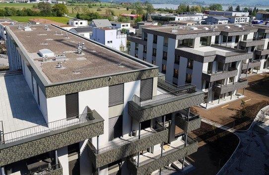Neubau Rapperswil Langrüti, Flachdach- und Spenglerarbeiten