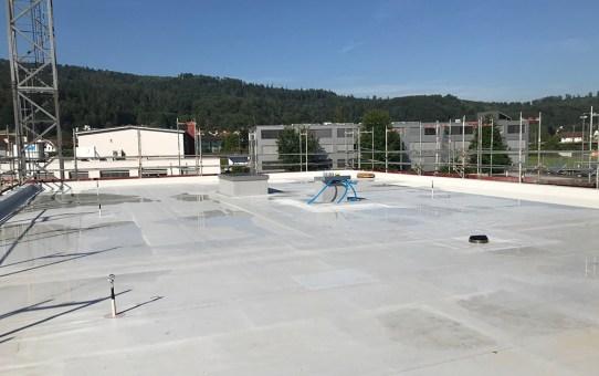 Das Dach – nachhaltig und ökologisch