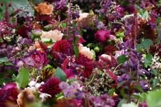Floral treats