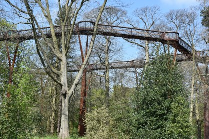 ... and back to the treetop walkway