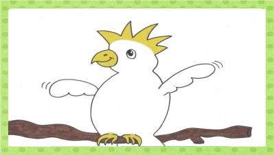 der kleine Kakadu
