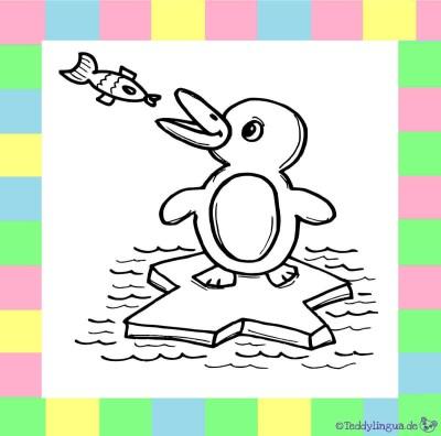 Pinguin zum Ausmalen auf weißem Hintergrund