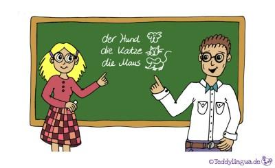 die Lehrerin, der Lehrer
