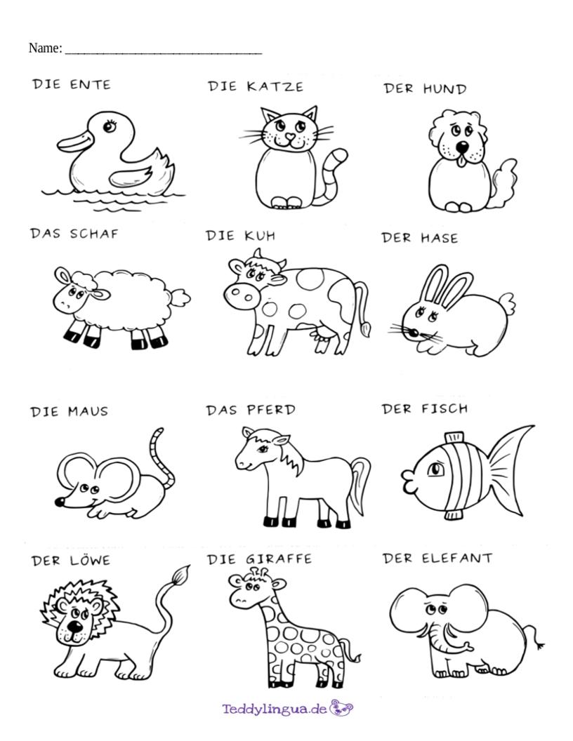 Arbeitsblatt Tiere : Arbeitsblätter teddylingua