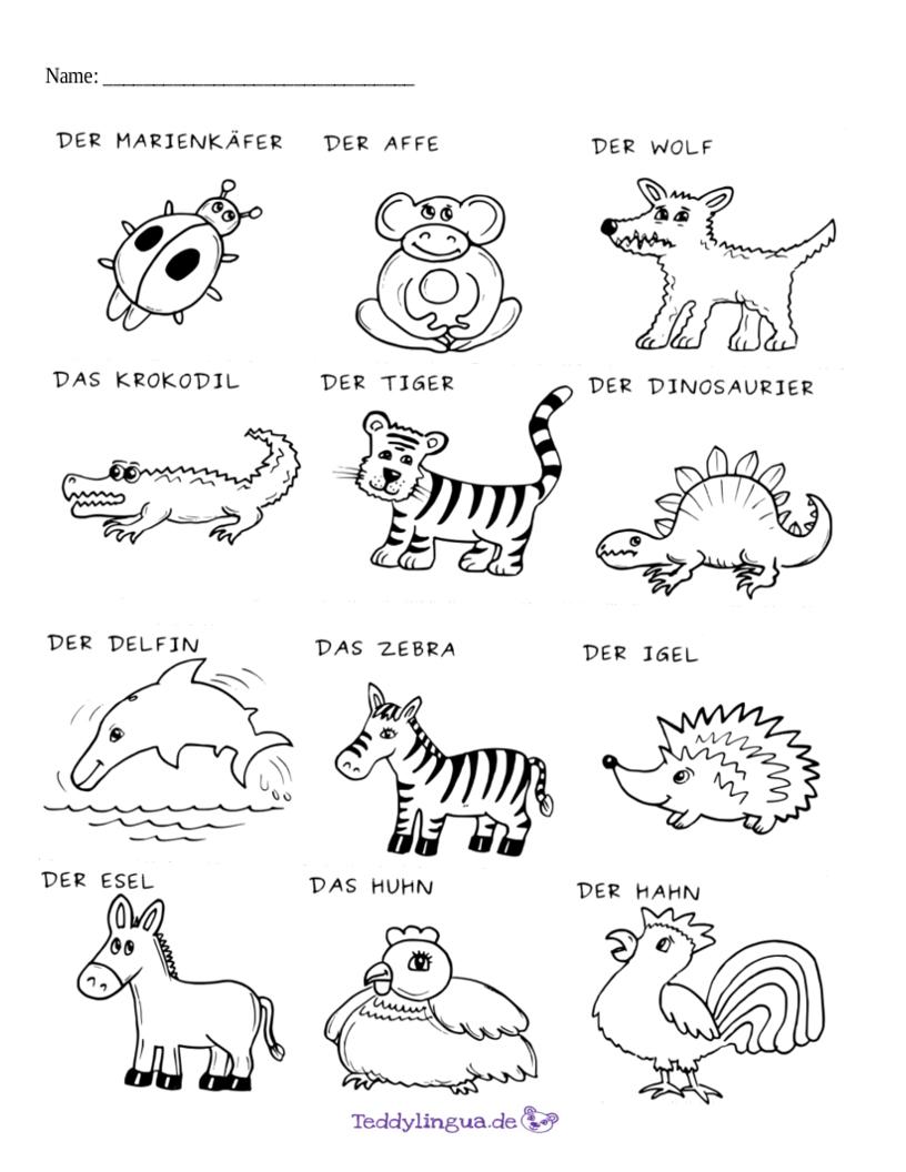 Arbeitsblätter | Teddylingua