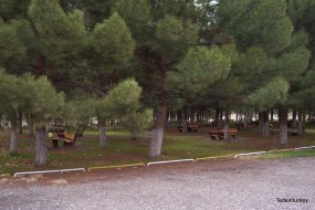 Egyetemi Campus szabadidős övezete - piknik-övezet