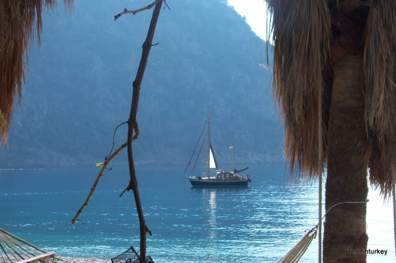 butterfly valley 159