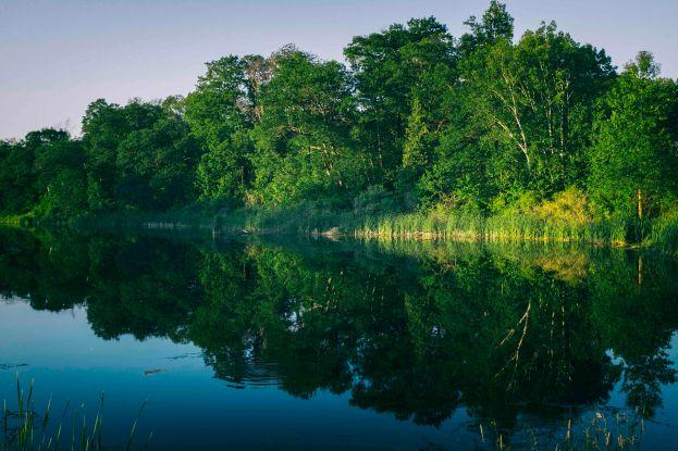 Wye River-1
