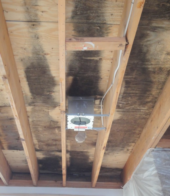 cathedral ceilings mold and moisture