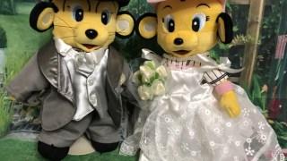 【阪神タイガース】ラッキーとトラッキーのウェルカムドール