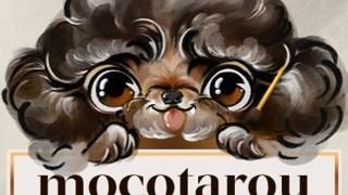 モコタロウの年齢や本名などのwiki風プロフ!素顔画像はある?編み物の販売は?