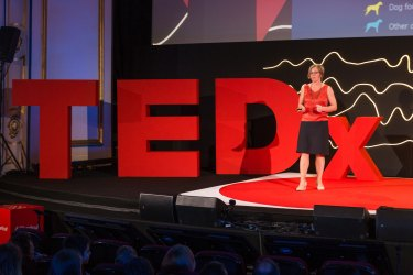 I did my research, blew the whistle and found myself at war: Ilze Matīse‑VanHoutana at TEDxRiga 2017