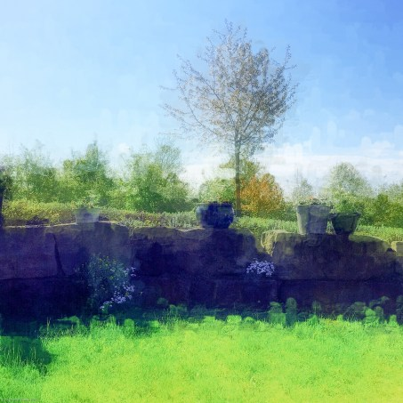 blog_-23