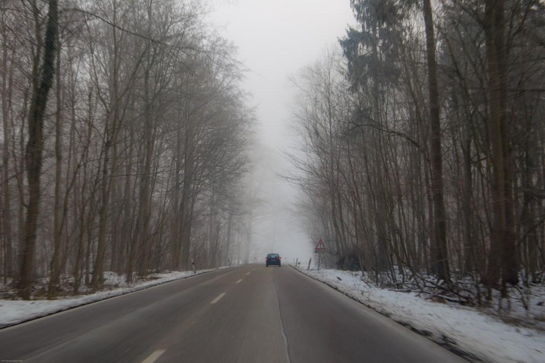 nebel-100