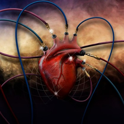 heart-2560532_640